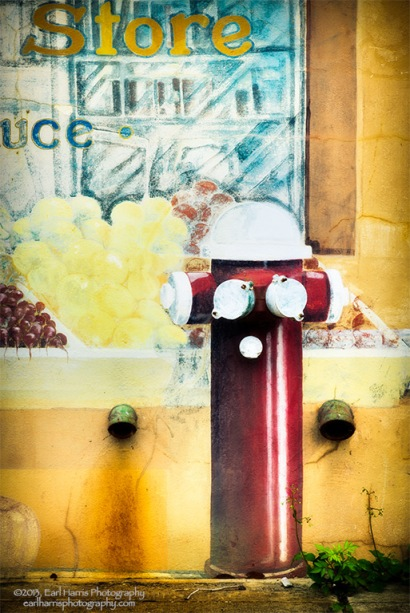 """Market Hydrant"" [Click on image to enlarge/reduce its size.] Nikon D800, ISO 200, f/11 at 1/200 sec., 85 mm"