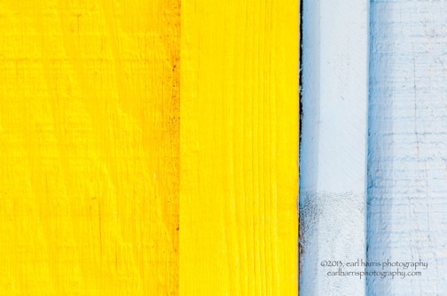 """Yellow and Grey"" [Click on image to enlarge/reduce its size.] Nikon D300, ISO 250, f/4.0 at 1/500 sec., 85 mm"