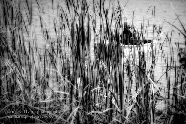 """Gone Fishing"" [Click the image to enlarge/reduce its size.] Nikon D800, ISO 100, f/4.0 at 1/640 sec., 85 mm"