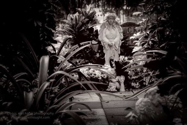 """Resting in the Garden"" [Click the image to enlarge/reduce its size.] Nikon D800, ISO 320, f/9.0 at 1/13 sec., 85 mm"