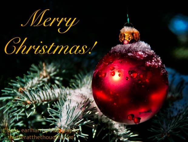 "Merry Christmas from earlharrisphotography and ""I Shutter at the Thought!"""