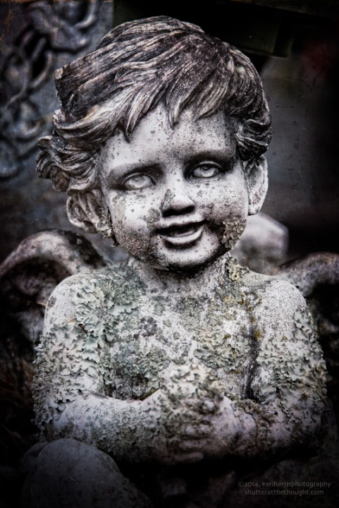 """Cherub, Changed"", Nikon D800, ISO 200, f/8.0 at 1/320 sec., 300mm"