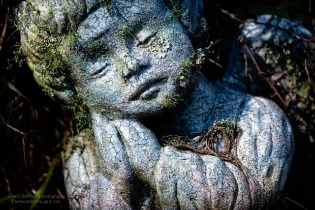 """Grief Evolved"", Nikon D800, ISO 200, f/5.6 at 1/160 sec., 150mm"