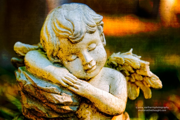 """Angelic Sleep"", Nikon D800, ISO 200, f/5.6 at 1/250 sec., 145 mm"