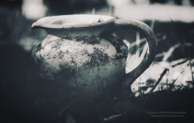 """Pitcher Picture"", Nikon D800, ISO 200, f/5.6 at 1/100 sec., 135mmClick for enlarged view and available print options."