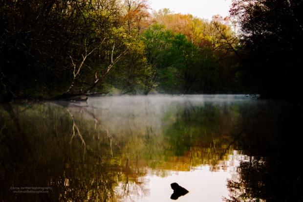 """Coahulla Creek"", Nikon D800, ISO 200, f/9.0 at 1/40 sec., 98mm"