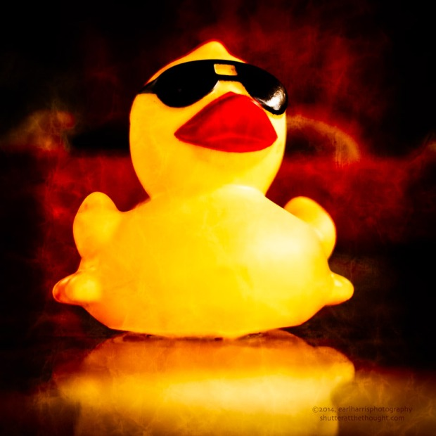 """Rubber Duck"", Nikon D800, ISO 320, f/2.2 at 1/800 sec., 50mmClick the image to view larger size and available print options."