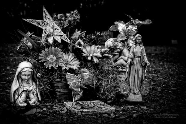 """""""Idol Hope"""", Nikon D800, ISO 200, f/8 at 1/125 sec., 78mm"""