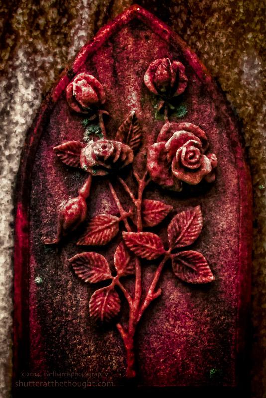 """""""Stone Roses"""", Nikon D800, ISO 200, f/3.5 at 1/500 sec., 28mm"""