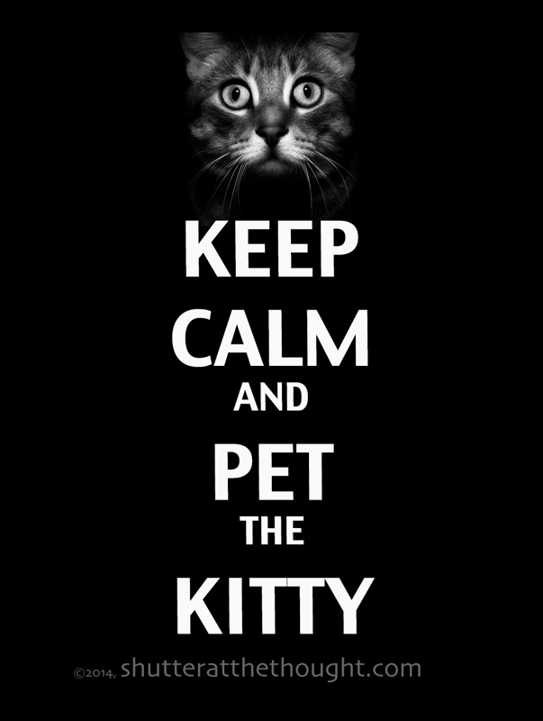 Keep-Calm-and-Pet-the-Kitty_WebVersion