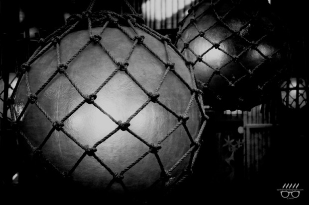 copyright2016_EarlHarrisPhotography_Rope-and-Balls